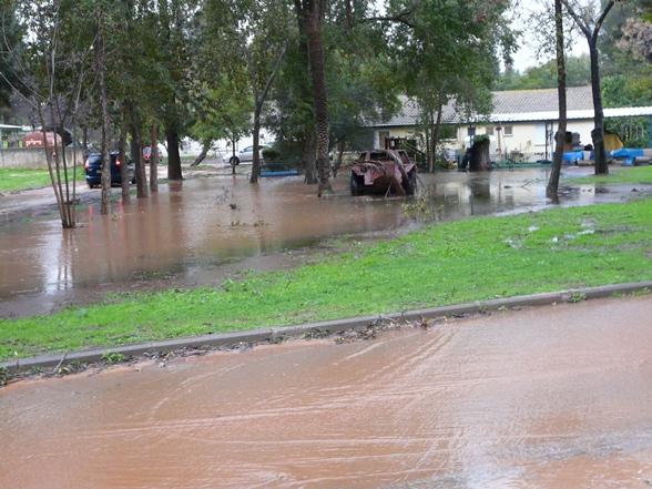 rain-1-1-daniel