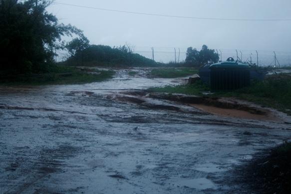 rain-1-3-amikam2